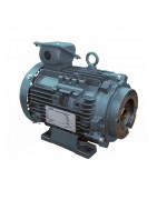 M series electric motors